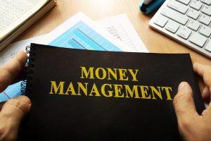 money-manager NED_Trd